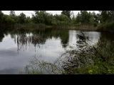 чудо болото дубль № 2 ЕВГЕН тут же вытащил щучку после меня на этом же месте